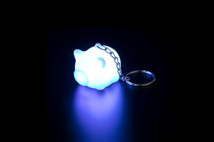 LED Keychain-Always In People's Vision
