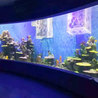 How is aquarium glass made?